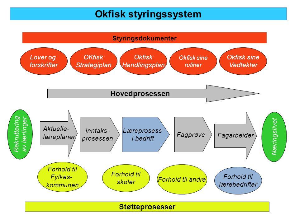 Okfisk styringssystem