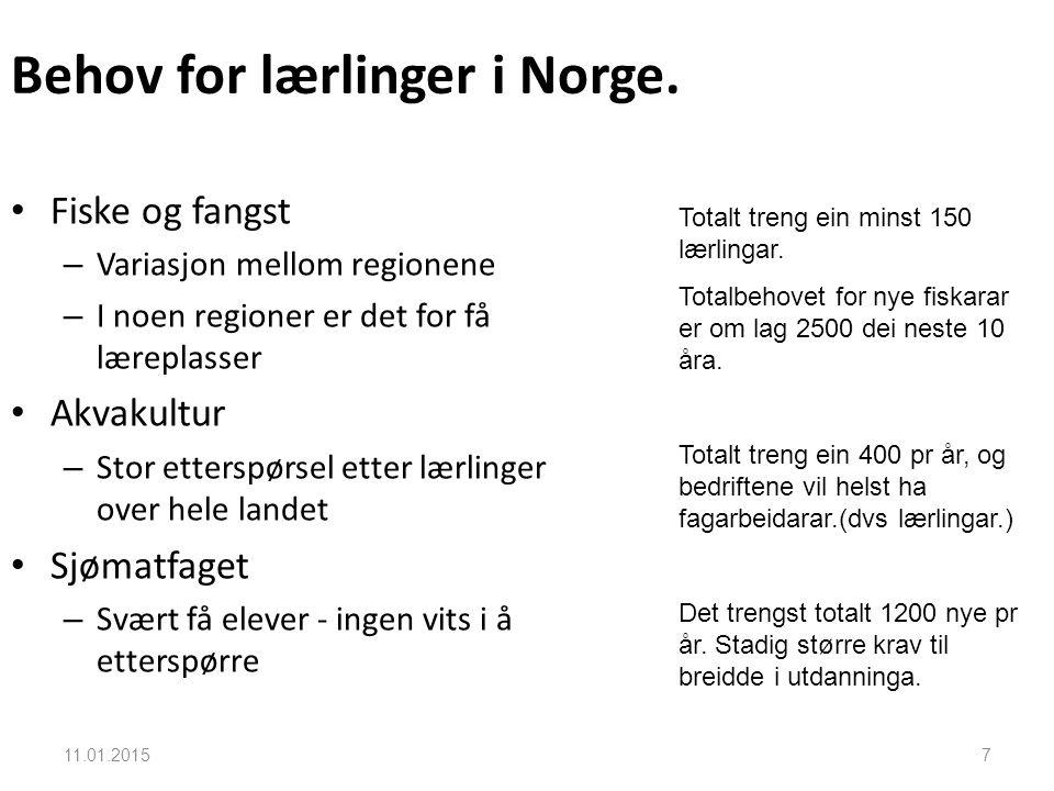 Behov for lærlinger i Norge.
