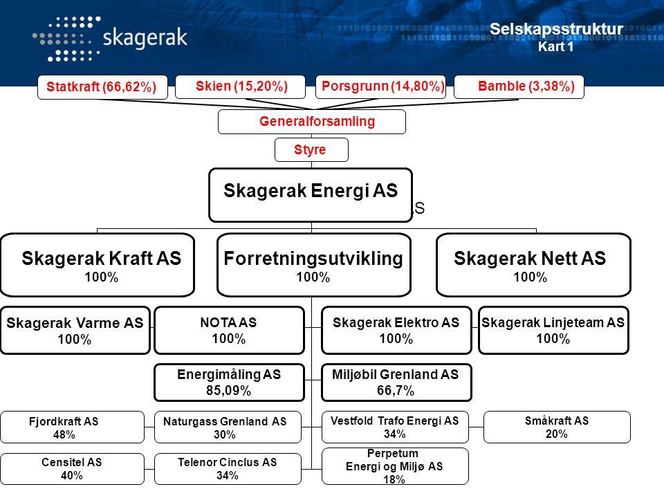 Skagerak Kraft AS 100% Forretningsutvikling 100% Skagerak Nett AS 100%