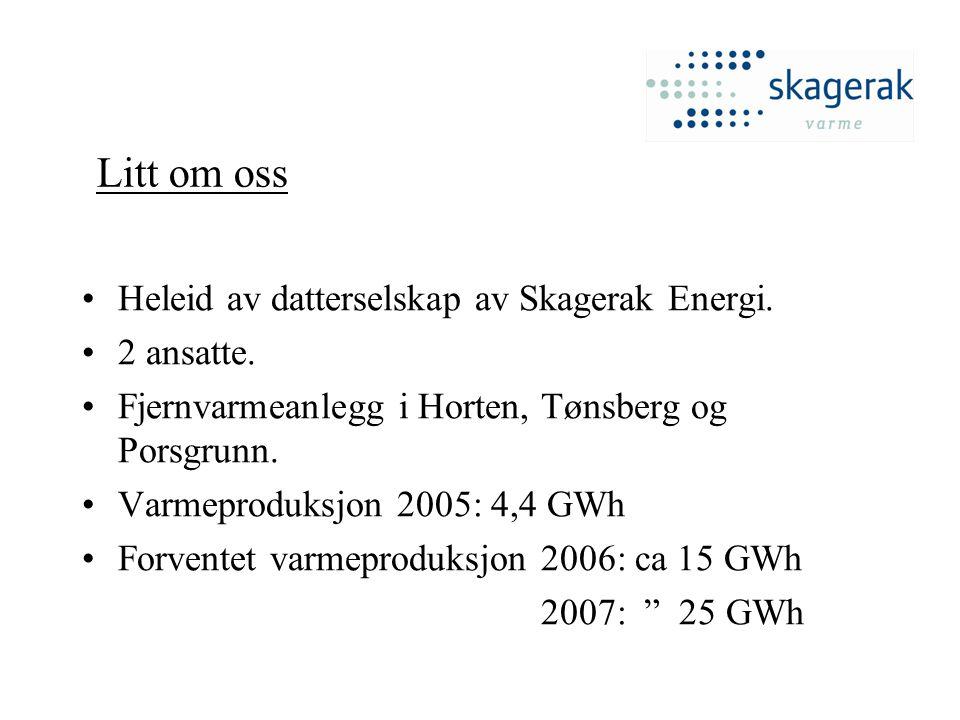 Litt om oss Heleid av datterselskap av Skagerak Energi. 2 ansatte.