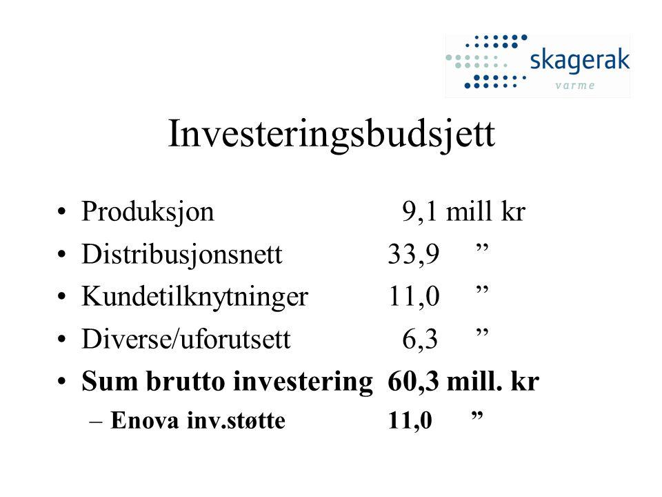Investeringsbudsjett