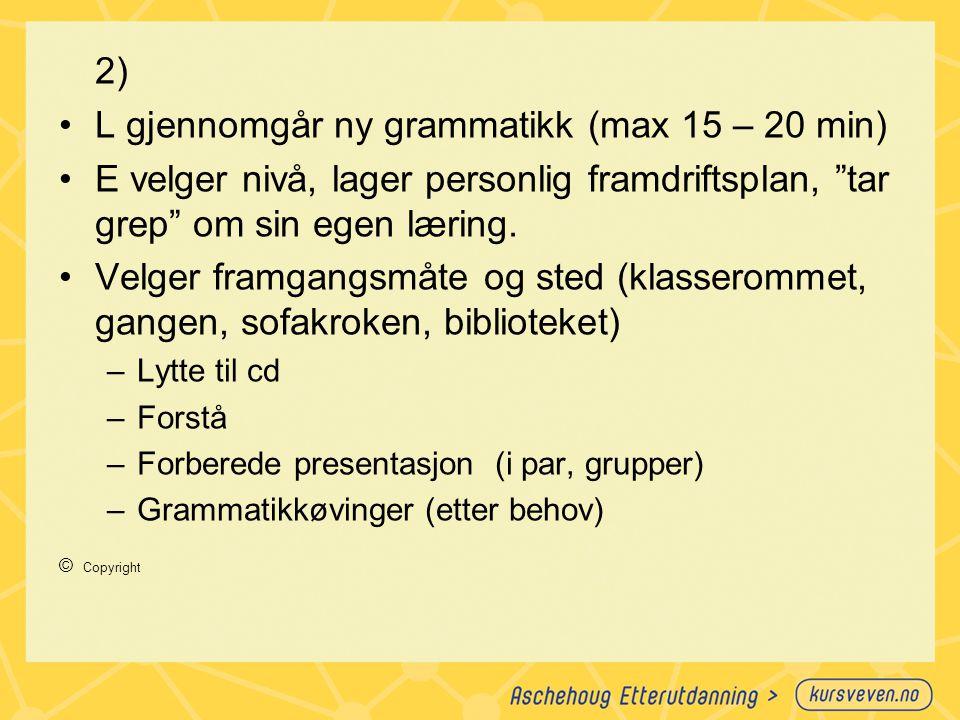 L gjennomgår ny grammatikk (max 15 – 20 min)