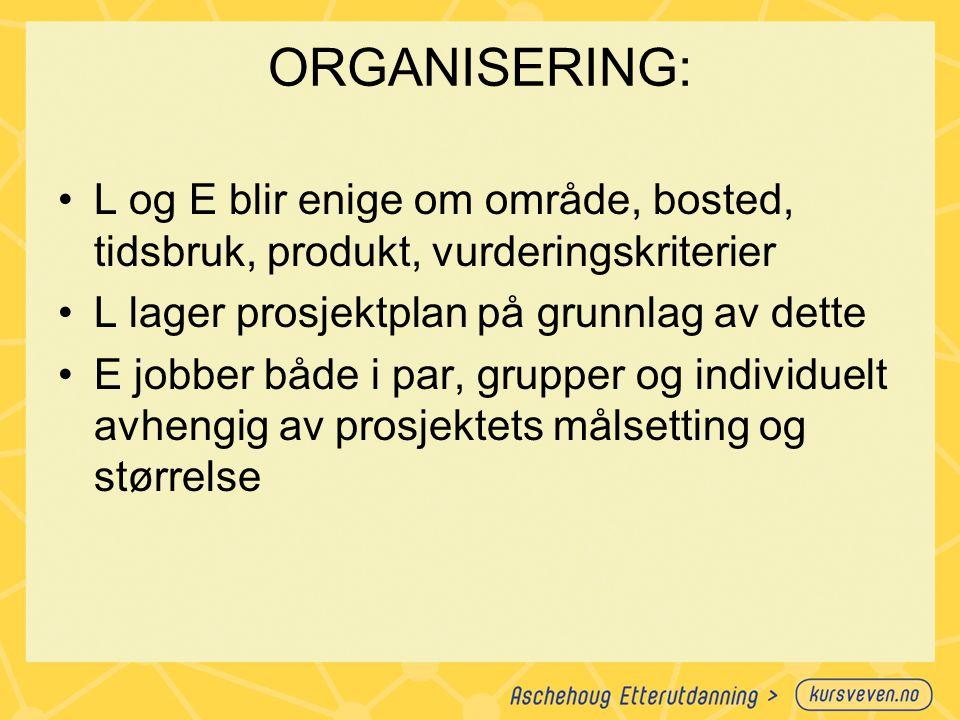 ORGANISERING: L og E blir enige om område, bosted, tidsbruk, produkt, vurderingskriterier. L lager prosjektplan på grunnlag av dette.