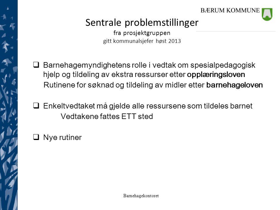 Sentrale problemstillinger fra prosjektgruppen gitt kommunalsjefer høst 2013