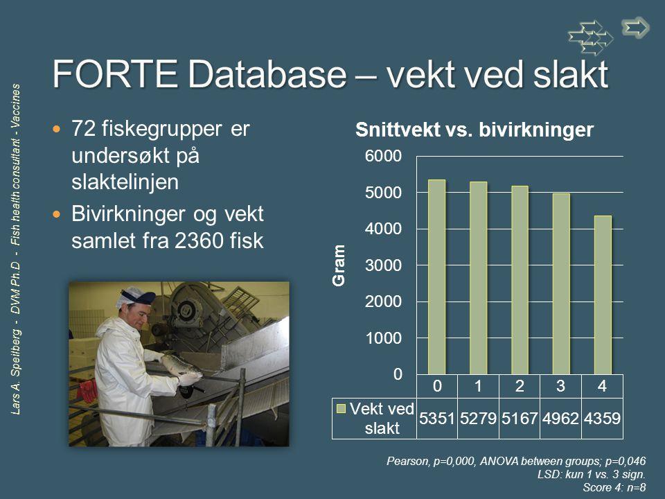 FORTE Database – vekt ved slakt