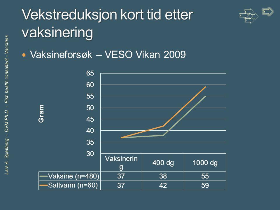 Vekstreduksjon kort tid etter vaksinering