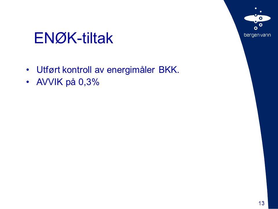 ENØK-tiltak Utført kontroll av energimåler BKK. AVVIK på 0,3% 13