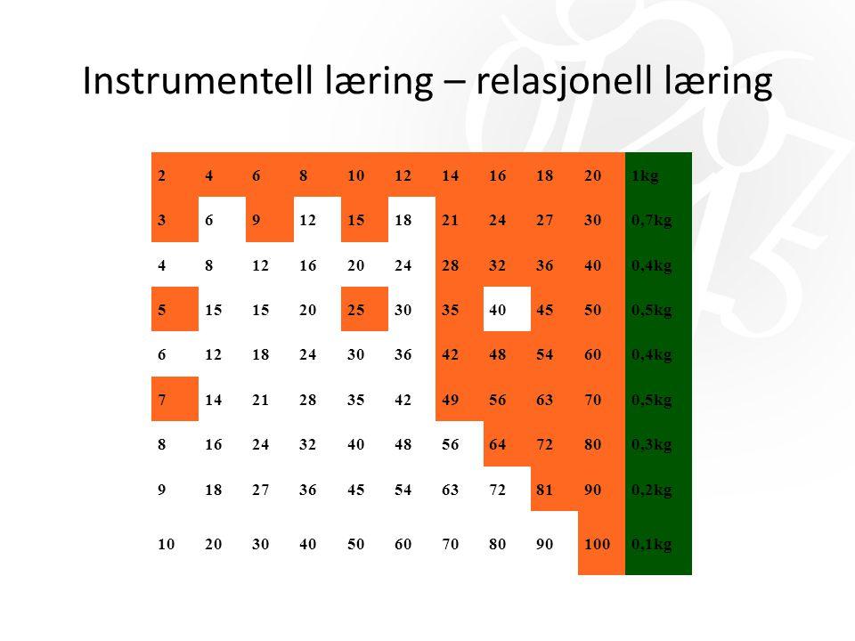 Instrumentell læring – relasjonell læring