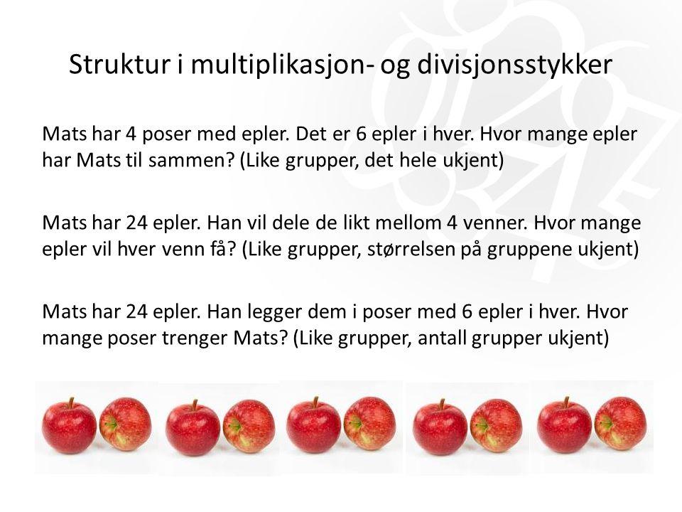 Struktur i multiplikasjon- og divisjonsstykker