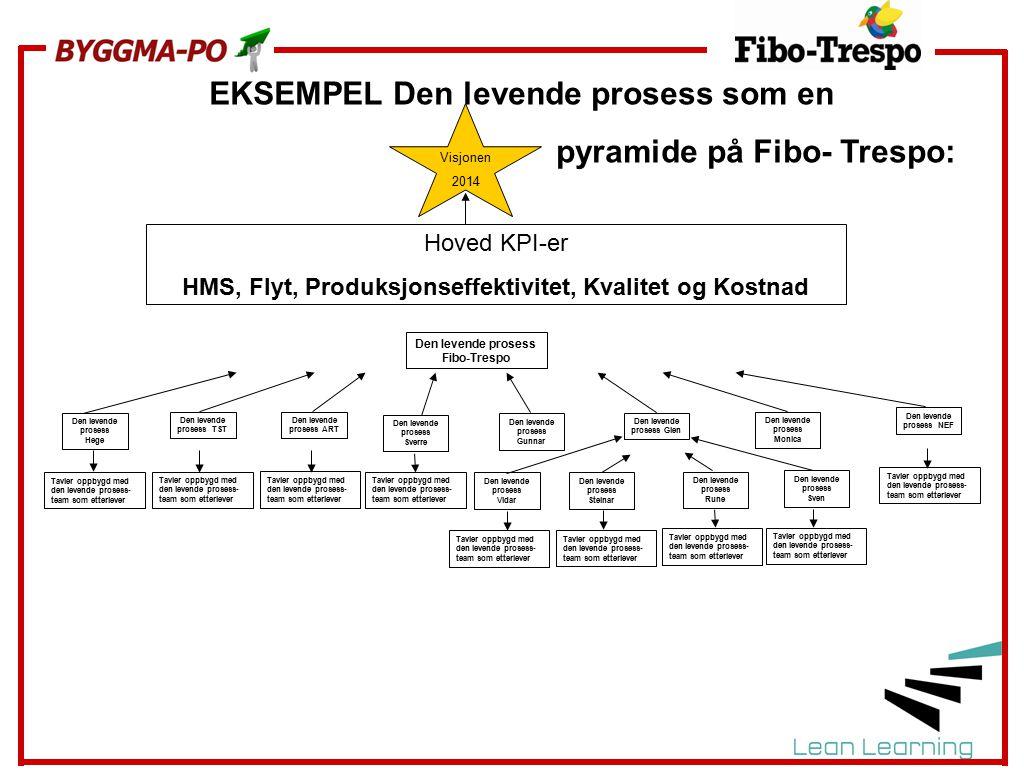 EKSEMPEL Den levende prosess som en pyramide på Fibo- Trespo: