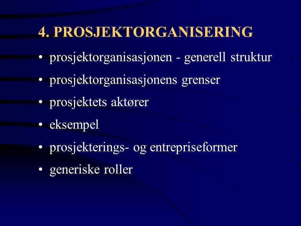 4. PROSJEKTORGANISERING
