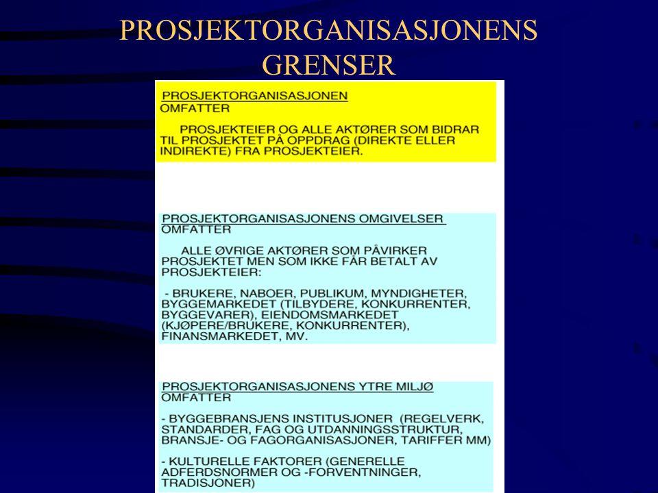 PROSJEKTORGANISASJONENS GRENSER