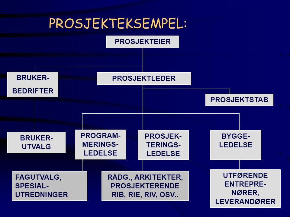 PROSJEKTEKSEMPEL: PROSJEKTEIER BRUKER- BEDRIFTER PROSJEKTLEDER