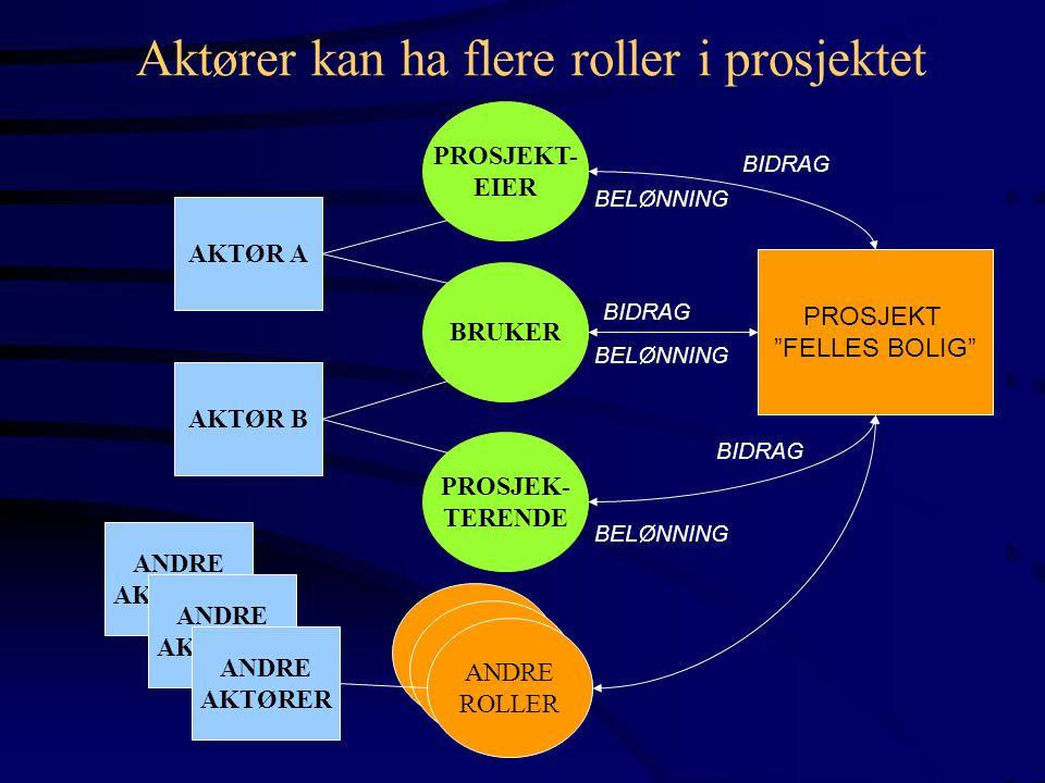 Aktører kan ha flere roller i prosjektet