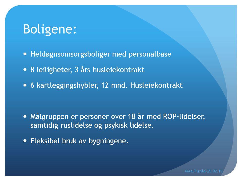 Boligene: Heldøgnsomsorgsboliger med personalbase