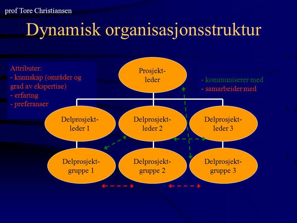 Dynamisk organisasjonsstruktur