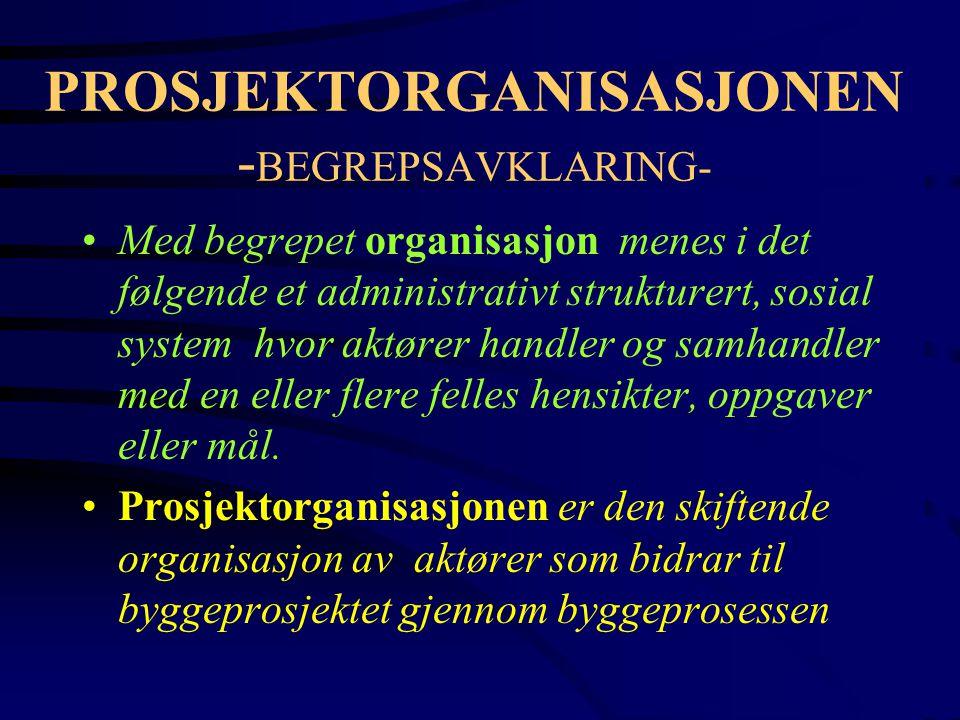 PROSJEKTORGANISASJONEN -BEGREPSAVKLARING-