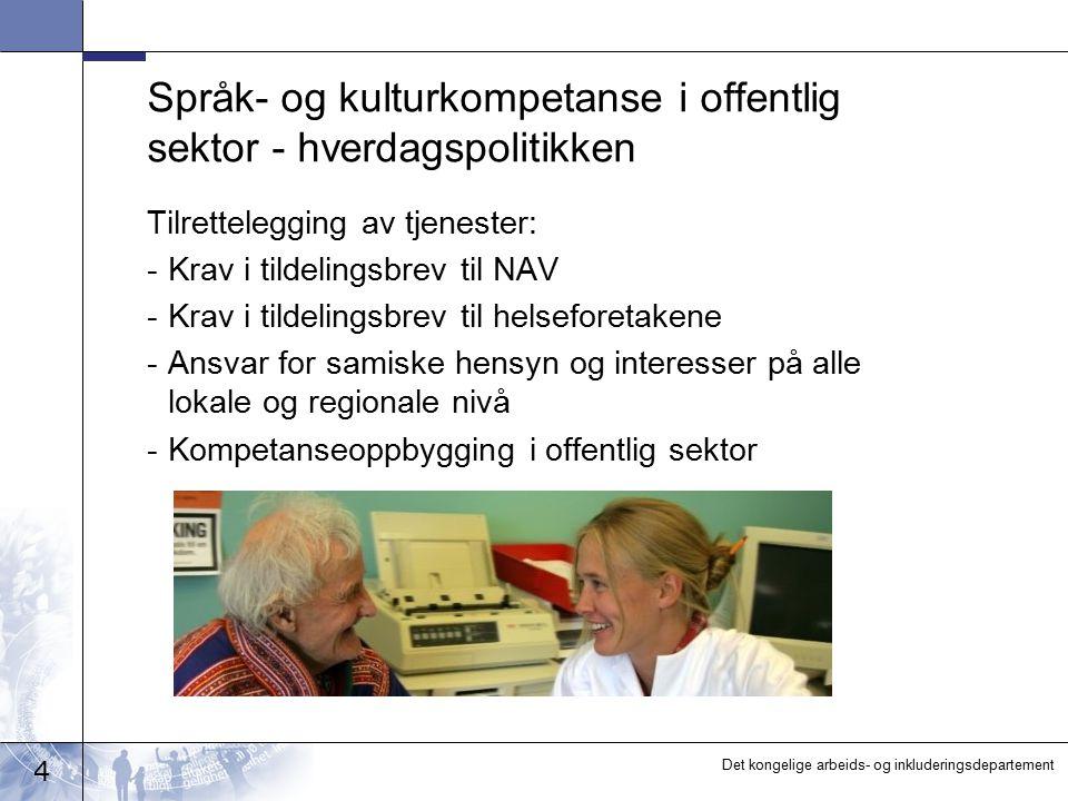 Språk- og kulturkompetanse i offentlig sektor - hverdagspolitikken