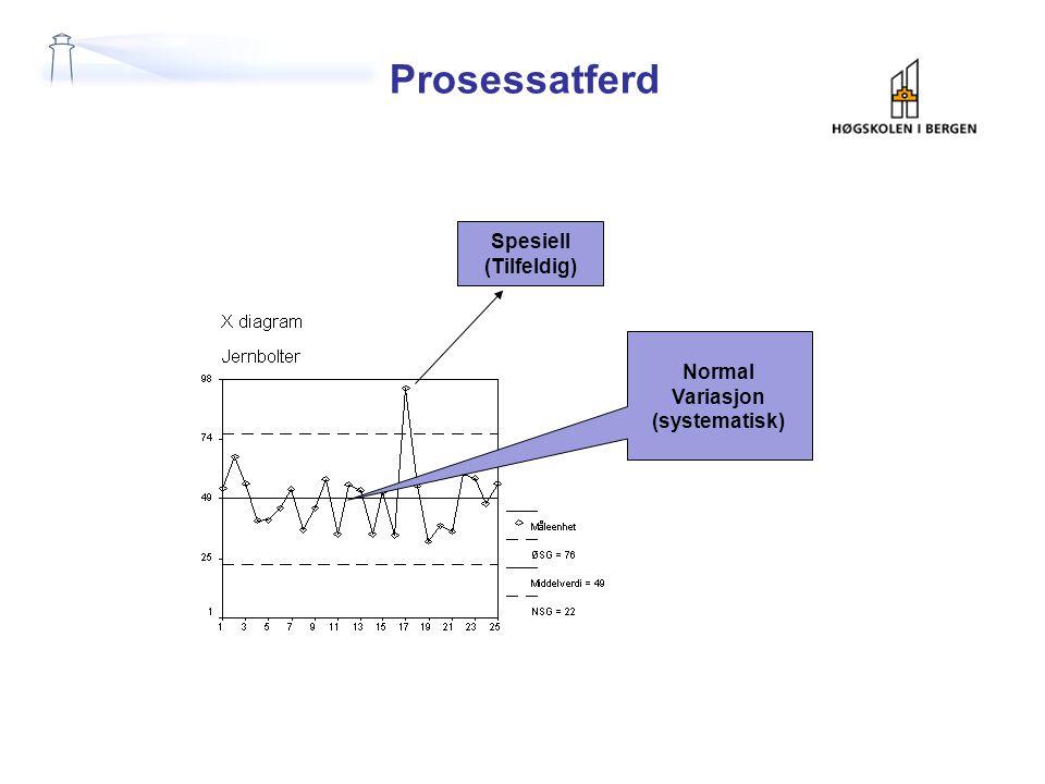 Prosessatferd Spesiell (Tilfeldig) Normal Variasjon (systematisk)