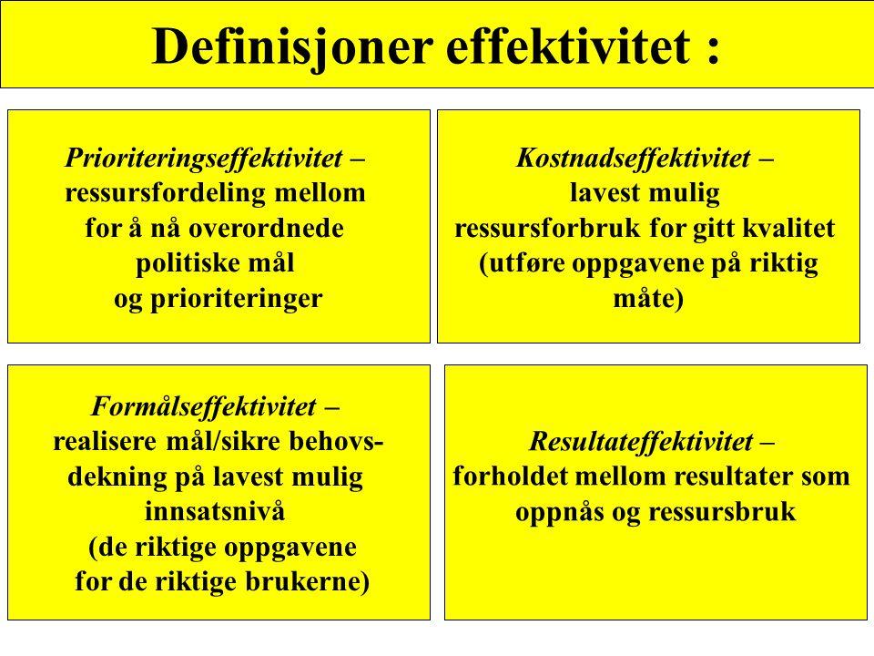 Definisjoner effektivitet :