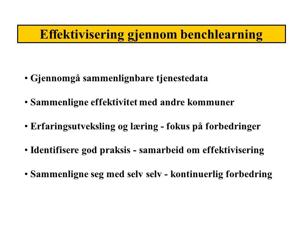 Effektivisering gjennom benchlearning