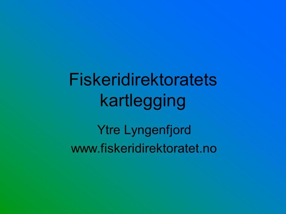 Fiskeridirektoratets kartlegging