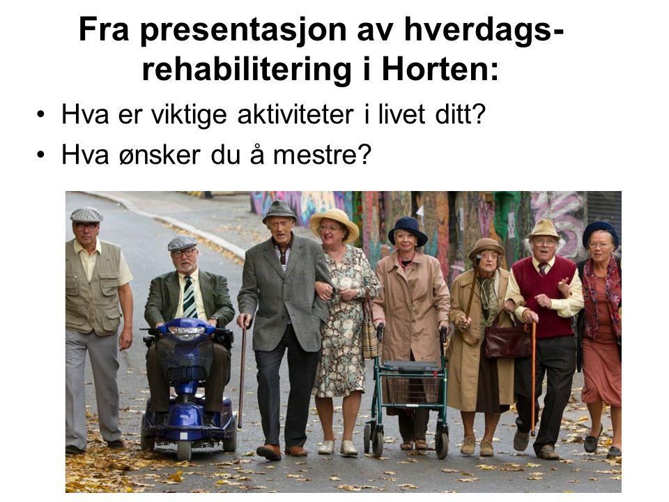 Fra presentasjon av hverdags-rehabilitering i Horten:
