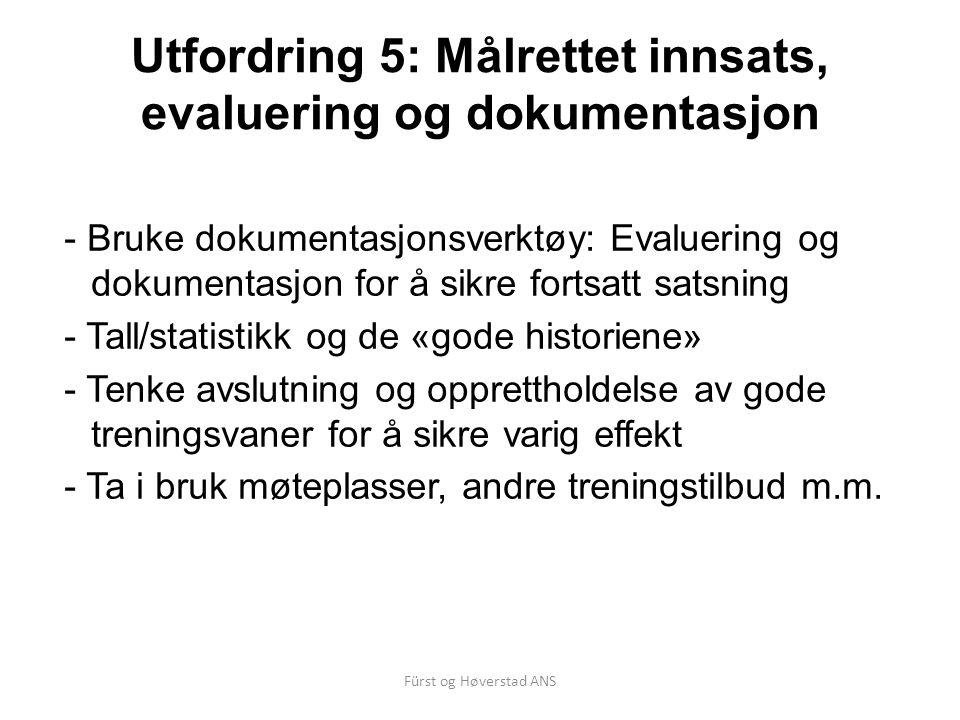 Utfordring 5: Målrettet innsats, evaluering og dokumentasjon