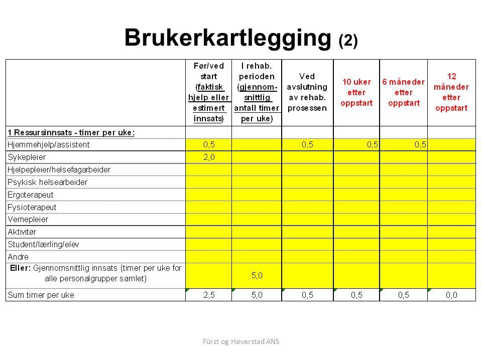 Brukerkartlegging (2) Fürst og Høverstad ANS