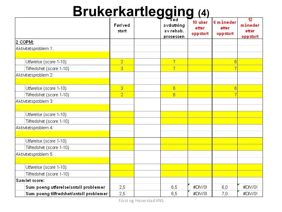 Brukerkartlegging (4) Fürst og Høverstad ANS
