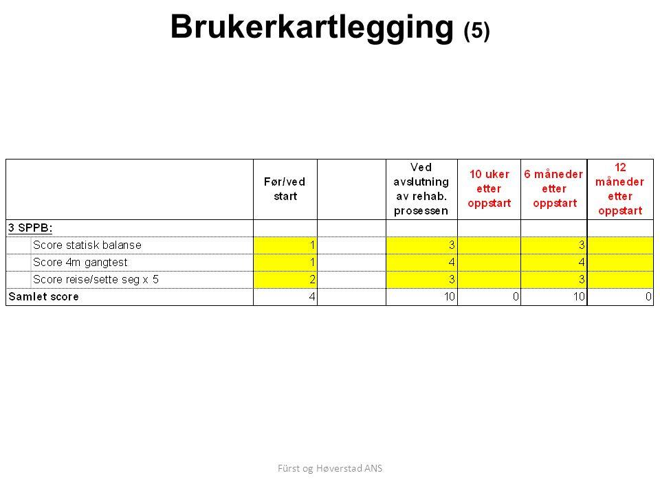 Brukerkartlegging (5) Fürst og Høverstad ANS