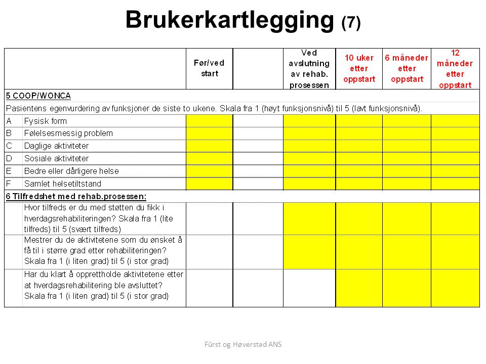 Brukerkartlegging (7) Fürst og Høverstad ANS