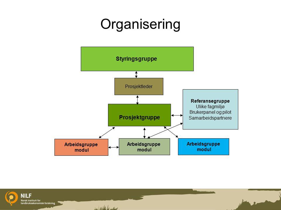 Organisering Styringsgruppe Prosjektgruppe Prosjektleder