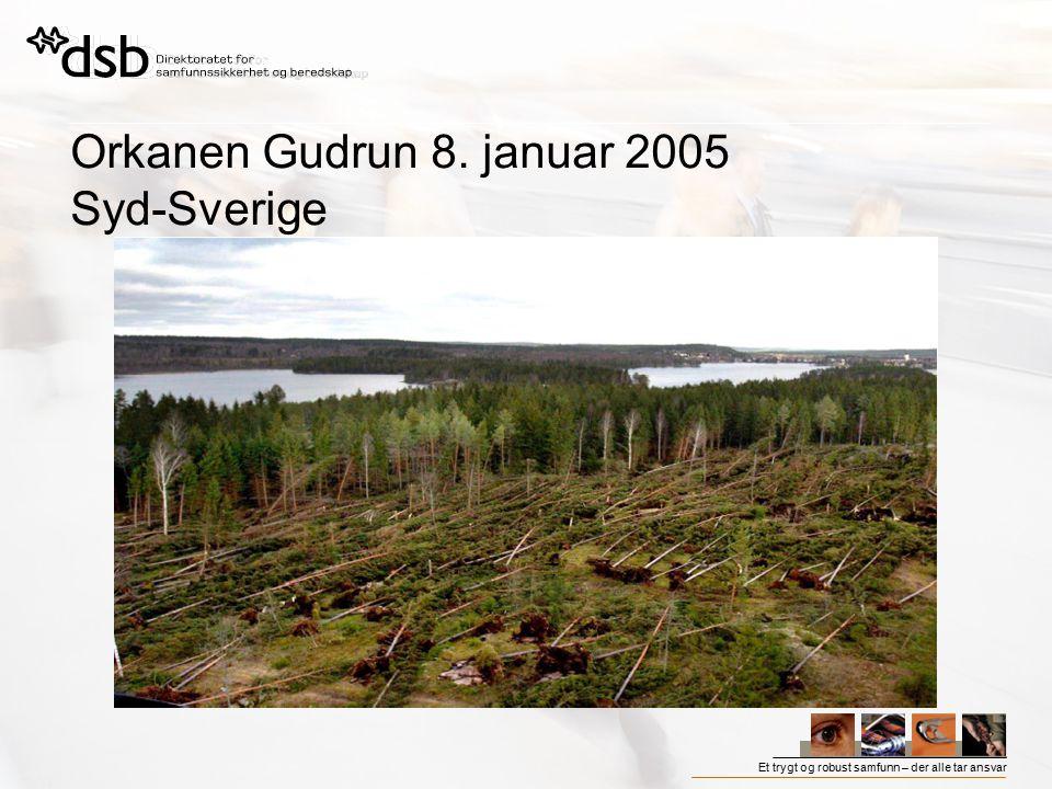 Orkanen Gudrun 8. januar 2005 Syd-Sverige