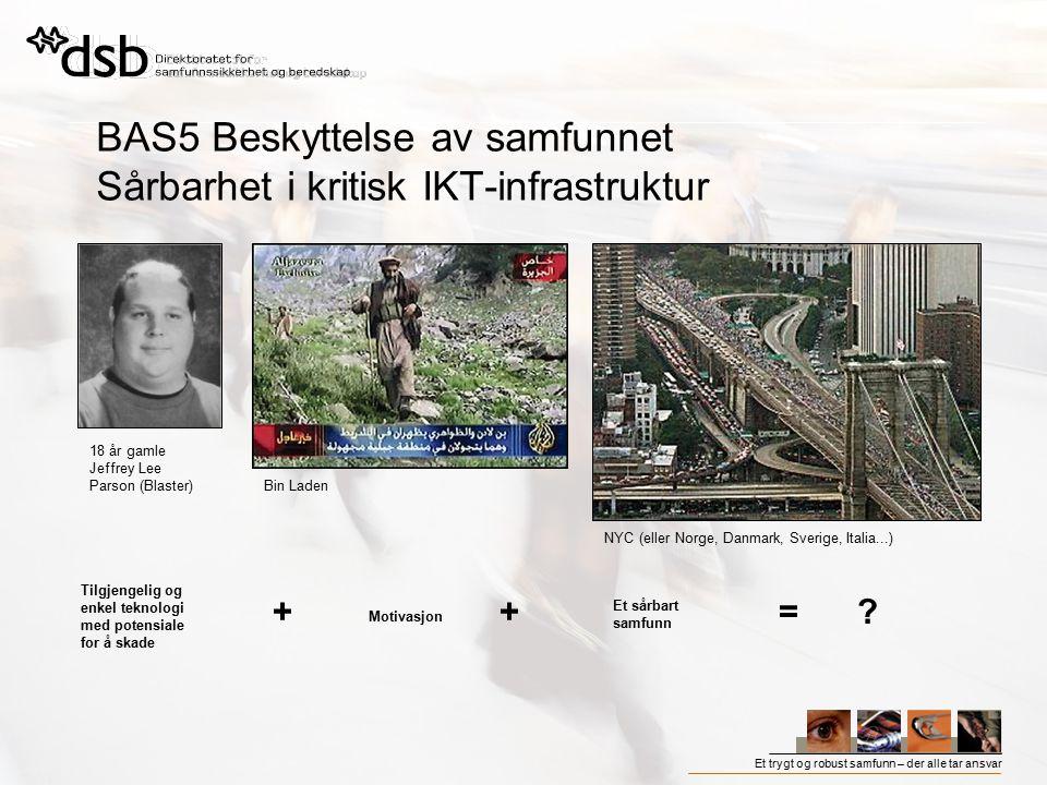 BAS5 Beskyttelse av samfunnet Sårbarhet i kritisk IKT-infrastruktur