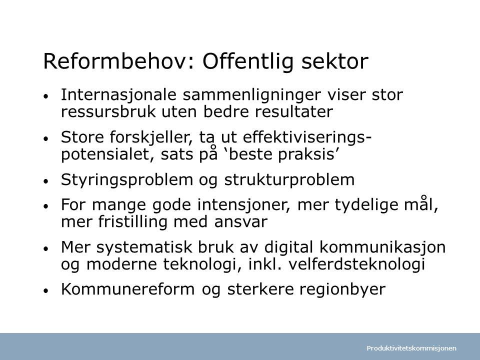 Reformbehov: Offentlig sektor