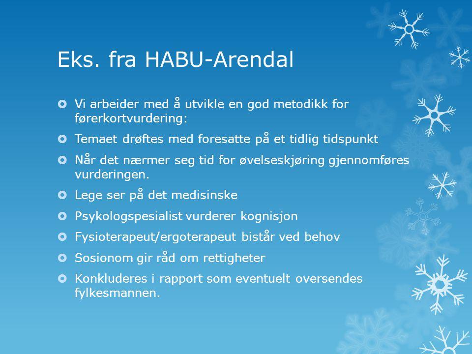 Eks. fra HABU-Arendal Vi arbeider med å utvikle en god metodikk for førerkortvurdering: Temaet drøftes med foresatte på et tidlig tidspunkt.
