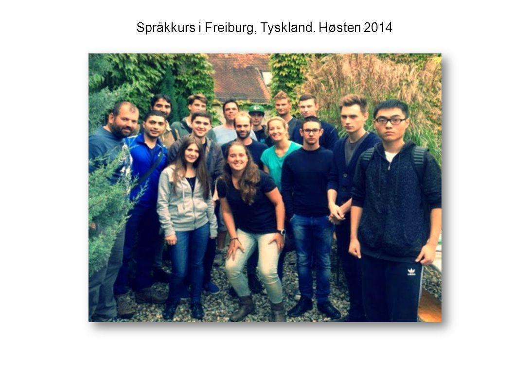Språkkurs i Freiburg, Tyskland. Høsten 2014