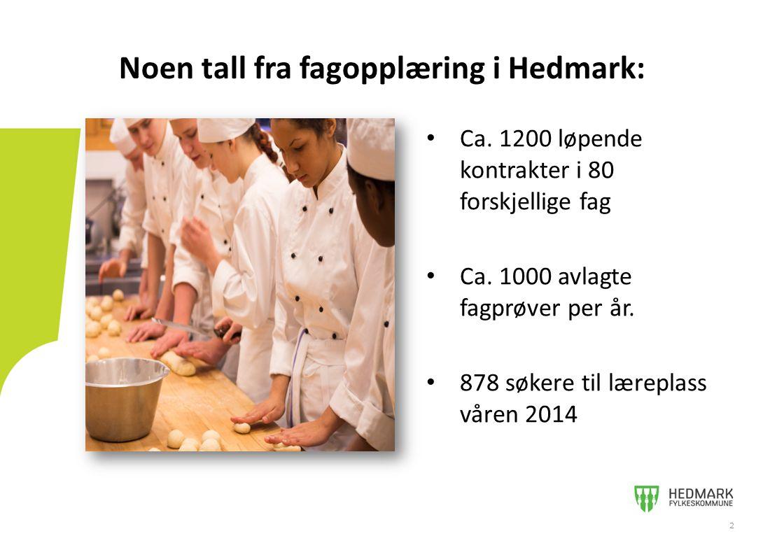Noen tall fra fagopplæring i Hedmark: