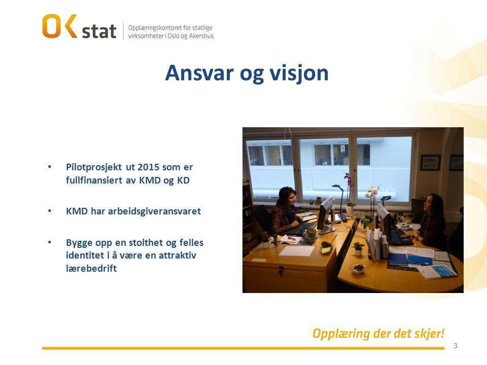 Ansvar og visjon Pilotprosjekt ut 2015 som er fullfinansiert av KMD og KD. KMD har arbeidsgiveransvaret.