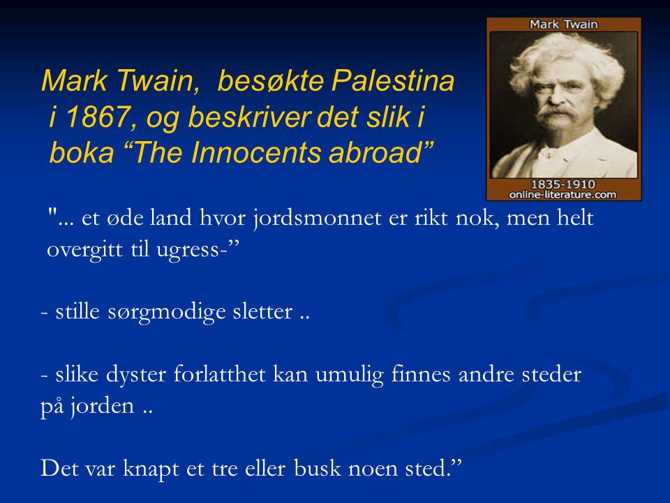 Mark Twain, besøkte Palestina i 1867, og beskriver det slik i