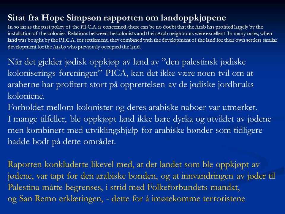 Sitat fra Hope Simpson rapporten om landoppkjøpene