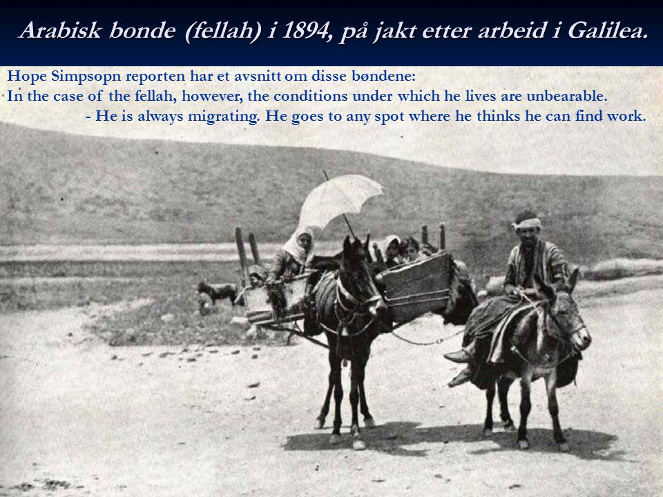 Arabisk bonde (fellah) i 1894, på jakt etter arbeid i Galilea.