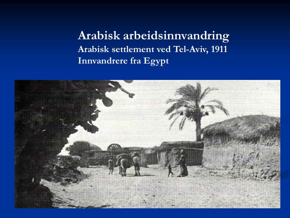 Arabisk arbeidsinnvandring