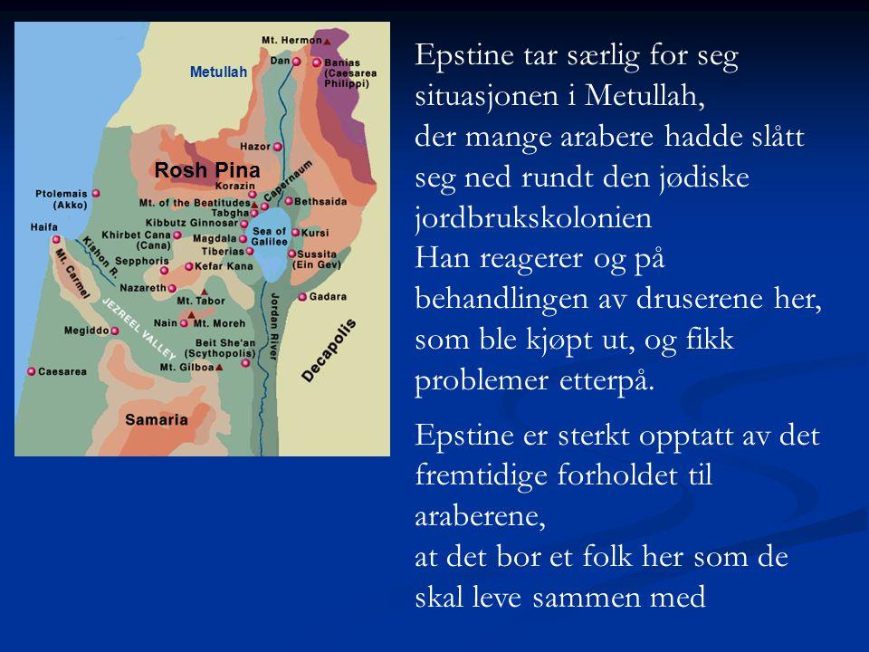Epstine tar særlig for seg situasjonen i Metullah,
