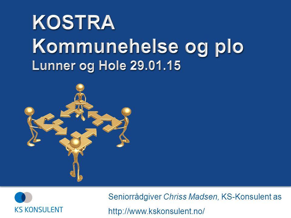 KOSTRA Kommunehelse og plo Lunner og Hole 29.01.15