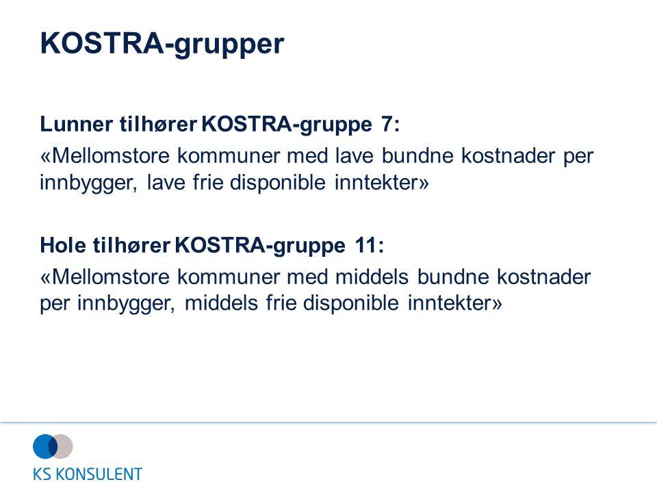 KOSTRA-grupper