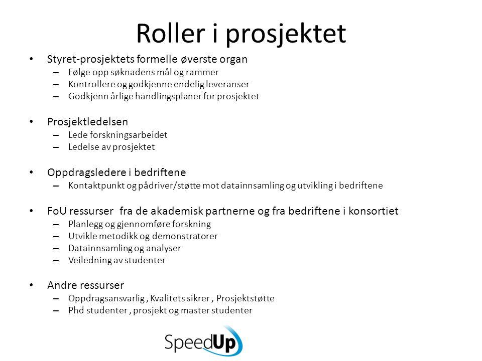 Roller i prosjektet Styret-prosjektets formelle øverste organ