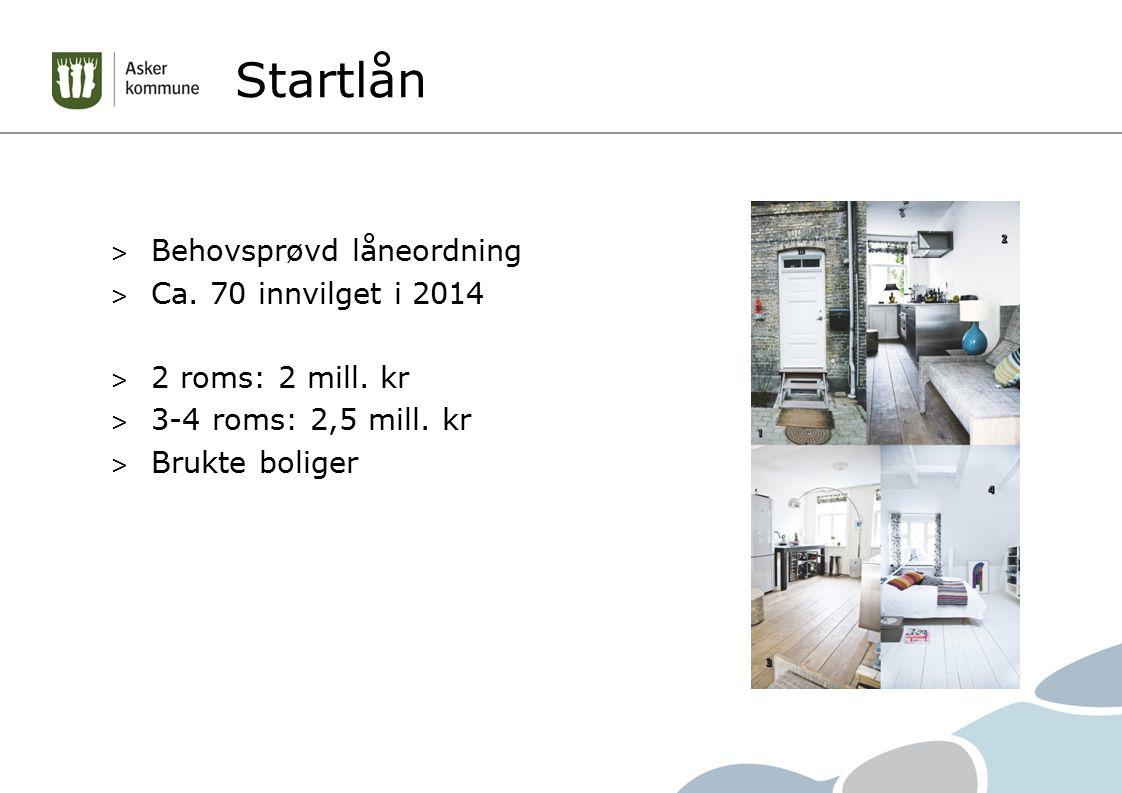 Startlån Behovsprøvd låneordning Ca. 70 innvilget i 2014