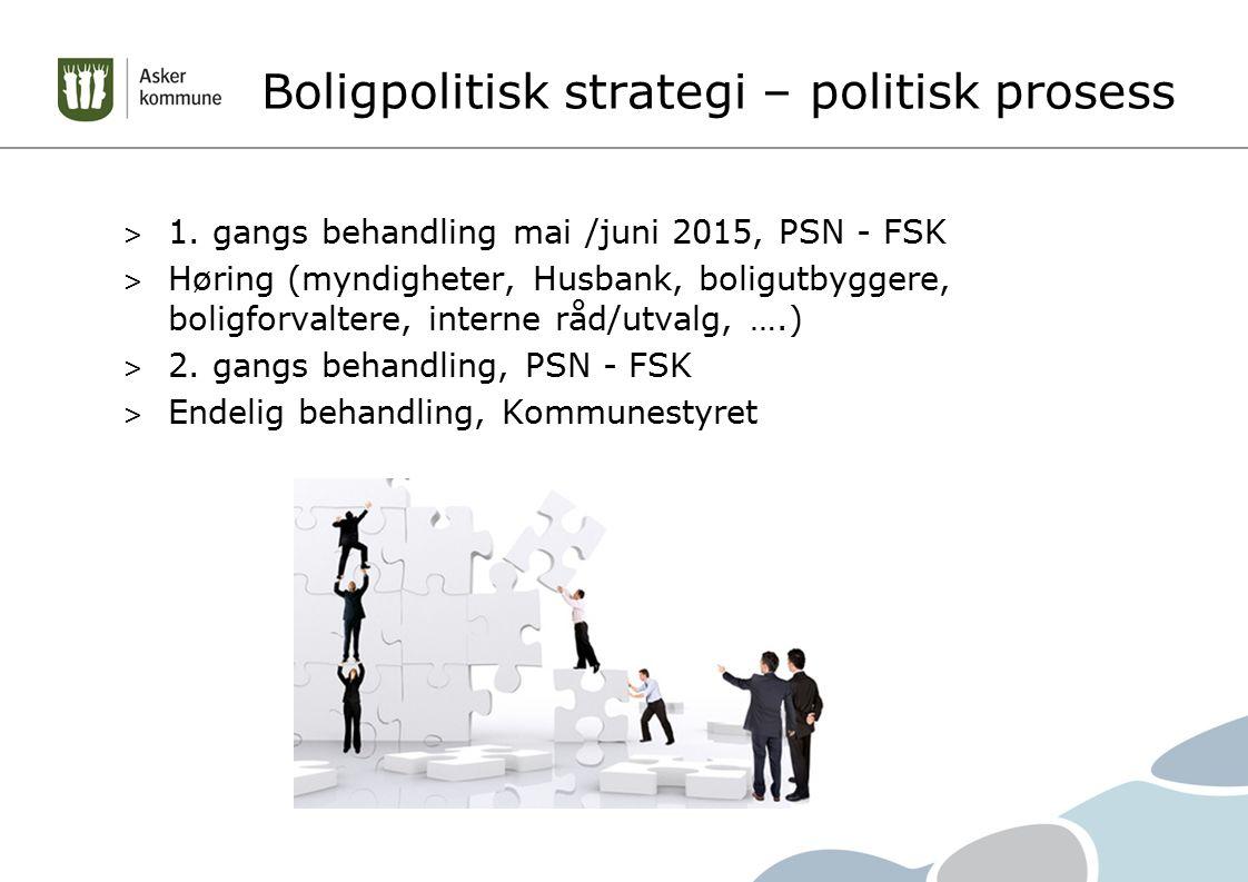 Boligpolitisk strategi – politisk prosess